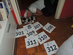 38. novogodišnja utrka