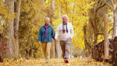 Old Couple Walks Down Fall Stock Footage Video (100% Royalty ...
