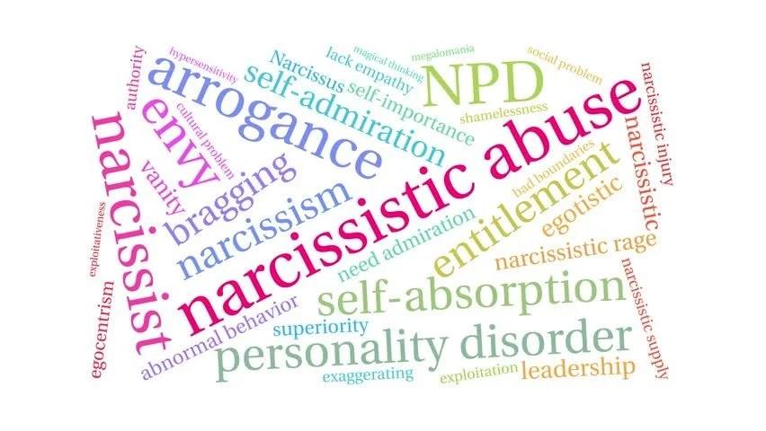 Image result for narcissism words