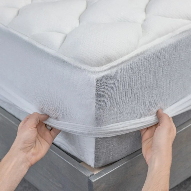 Kotter Home Extra Plush Rayon From Bamboo Top Mattress Pad Free Shipping Today 16851729