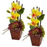 Cattleya Orchid And Succulent Arrangement Set Of 2 Yellow On Sale Overstock 14325257