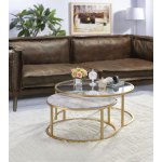Acme Shanish 2 Pieces Pack Coffee Table Set Faux Marble And Gold Overstock 25767839