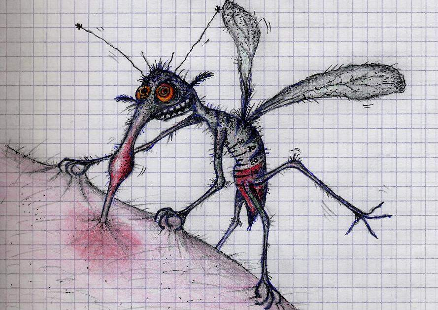 Комар размножение и развитие