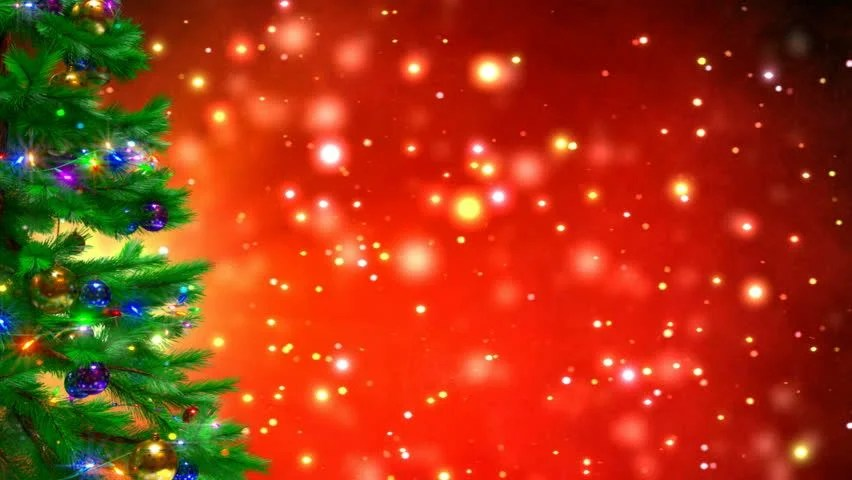 Christmas Tree On Red Bokeh Stock Footage Video 100