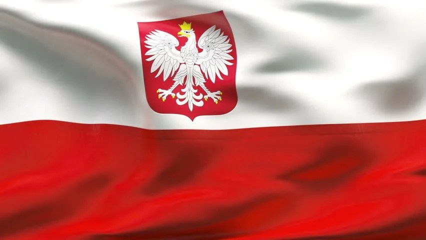 Image result for Polish flag