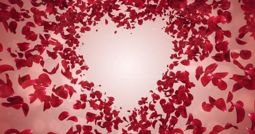 Flying Red Rose Flower Petals Lovely Heart Placeholder Backdrop For St Valentine S Day