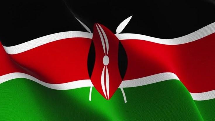 Image result for Kenya flag