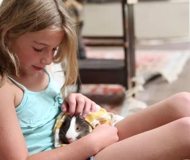 Pre Teen Girl Holding Pet Hamster