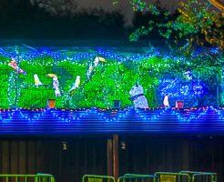 上野動物園イルミネーション