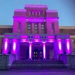 綺麗にライトアップされた『国立科学博物館』
