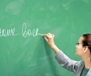 ÖYP Yurtiçi yabancı dil eğitimi tercihleri başladı
