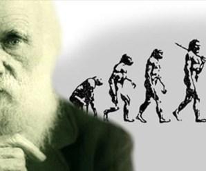 Bilim Akademisi'nden taslak müfredat yorumu: 'Evrimsiz biyoloji Newton'suz fiziğe benzer