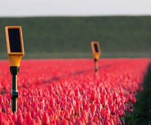 Hassas Tarım için Çiftlik Yönetim Sistemleri Ar-Ge Proje Çağrısı