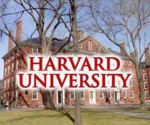 Harvard Universitesi MBA bursu