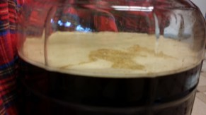 Irish Red Ale: 2 Days In, Close Up
