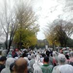 【大会】『第39回つくばマラソン』走ってきた!(後半ほぼ歩き・・・)