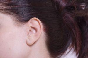 耳、みみ、横顔、聴覚