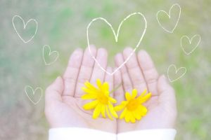 お花、手のひら、受け入れる、受容