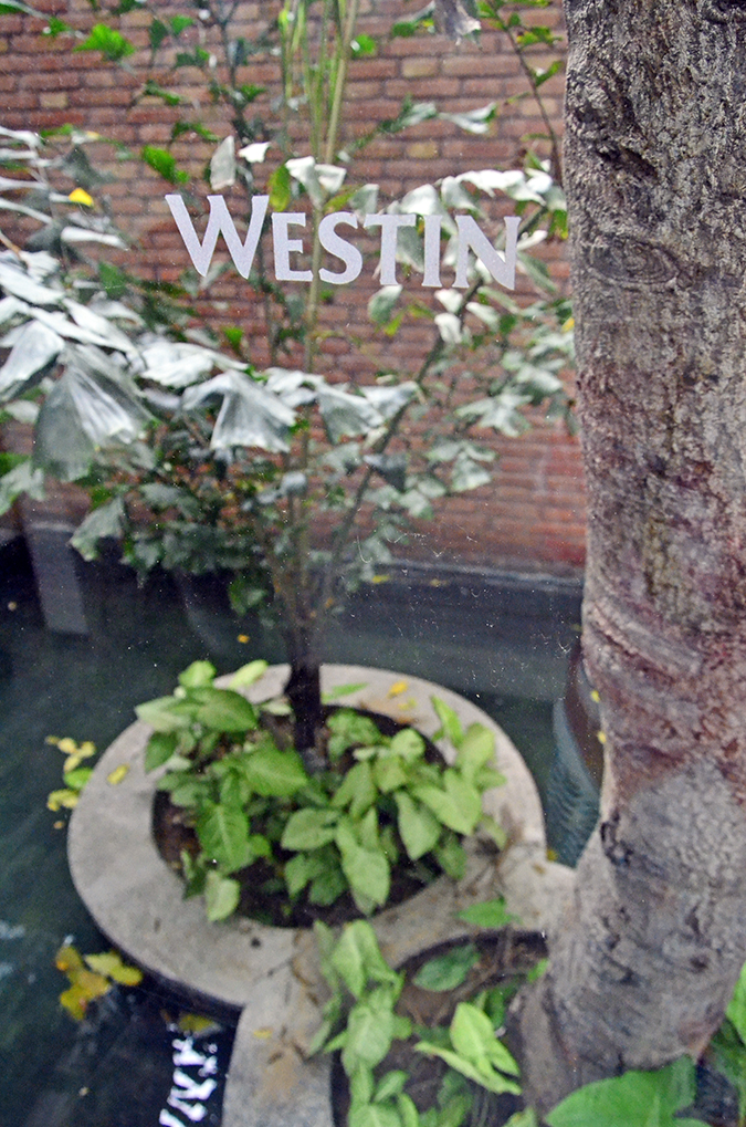 The Spa Getaway - Westin Sohna Resort & Spa - Water Bodies