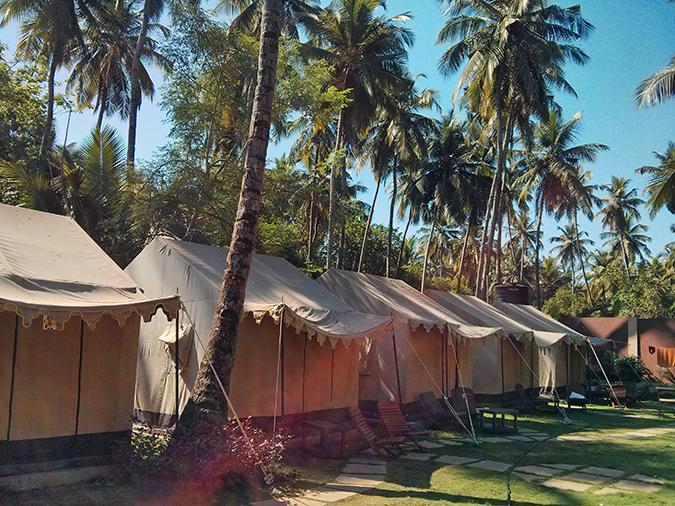 Morjim | Goa | www.akanksharedhu.com | Wanderer's Hostel Tents