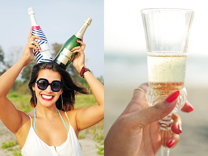 Beach Days   Goa   Akanksha Redhu   bottle horns combo
