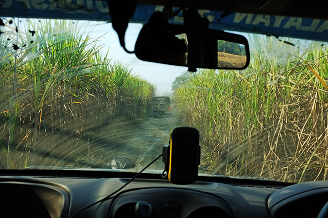 Akanksha Redhu | Travel India | driving through sugarcane