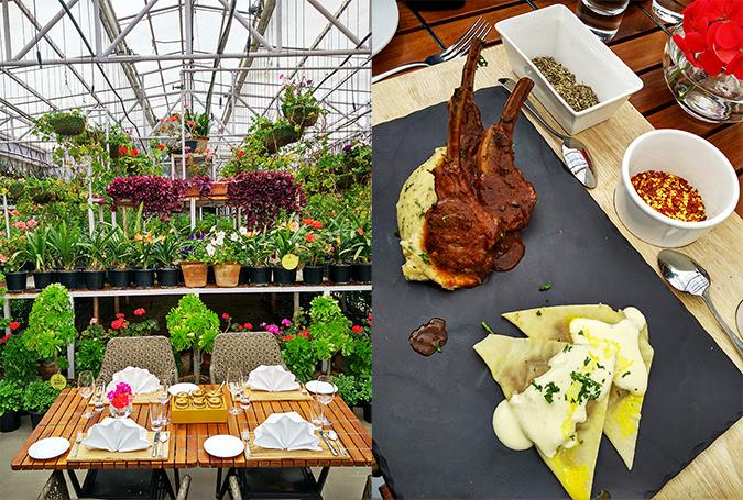 JW Marriott Mussoorie | Akanksha Redhu | Travel | greenhouse and lamb combo