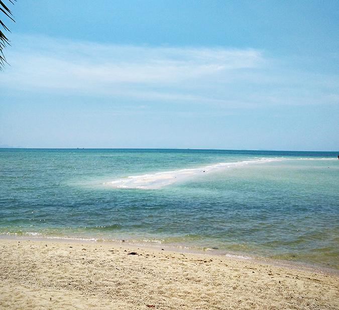 Coconut Beach   Koh Samui   Akanksha Redhu   #RedhuxKohSamui   sea