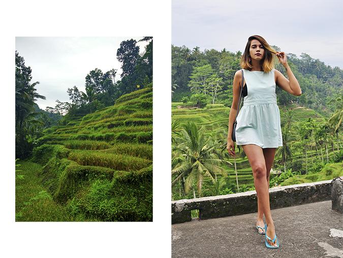 Tegalalang Rice Terraces - Ubud | Bali | Akanksha Redhu | combo 3