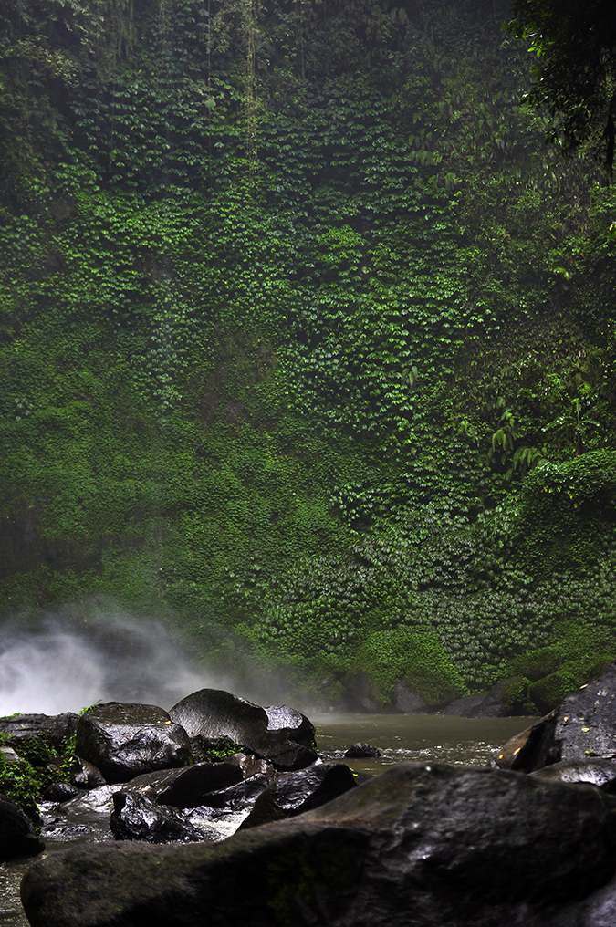 Nungnung Waterfall | Bali | Akanksha Redhu | green rock wall