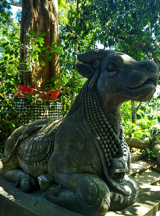 Sacred Monkey Forest Sanctuary - Ubud | Akanksha Redhu | cow statue