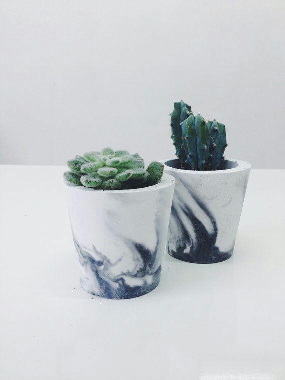 Home Inspo | Akanksha Redhu | real cactus