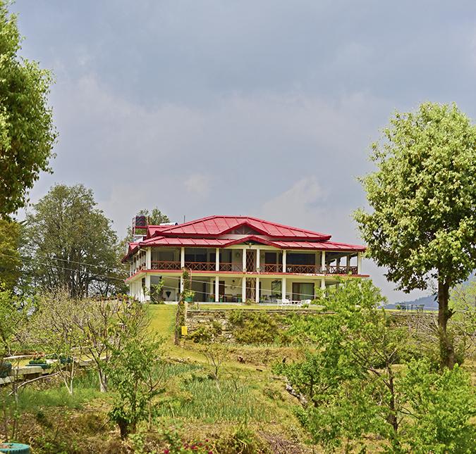 DYO The Organic Village Resort   Akanksha Redhu   resort square