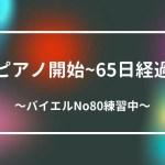 バイエルNO80
