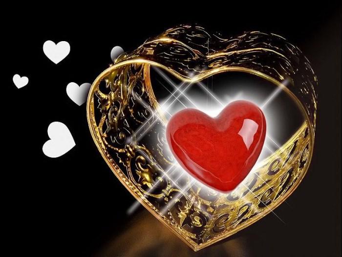 Vivre-le-Tout-Amour-au-quotidien