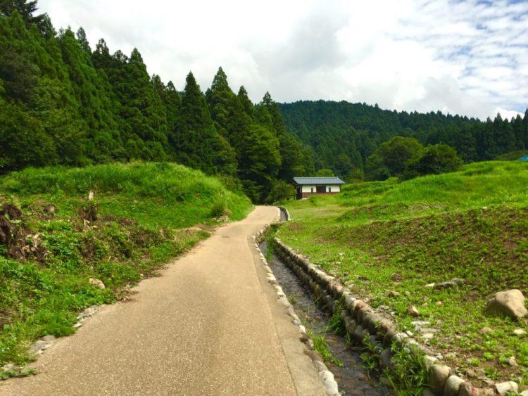 田んぼの道。