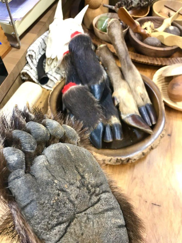 クマの手。