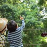 森と会話ができる親子になる!レポ、森のリトミック教室とごろんコンサート!@横浜市