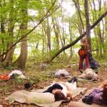 森に寝転ぶ。