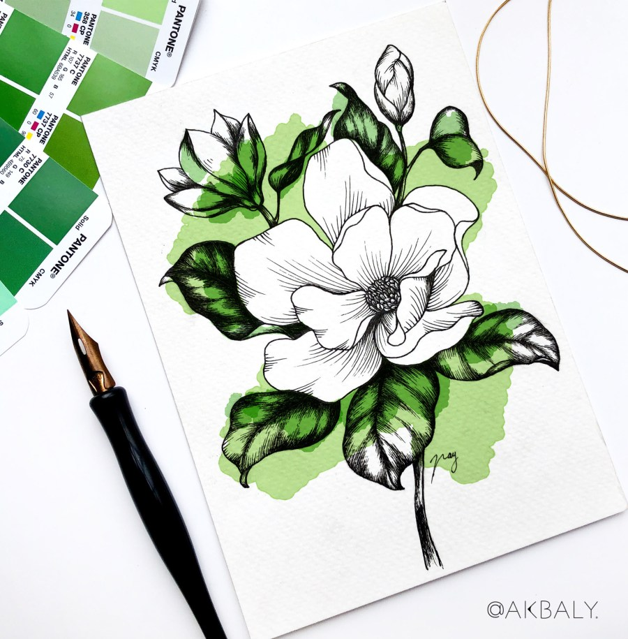 "Illustration ""Magnolias"" by Akbaly Prints Postcards Pen and Ink"