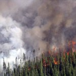 wildfire USFWS image
