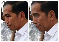 Viral Foto Air Mata Jokowi di Area Karhutla, Begini Faktanya