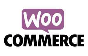 logo woo commerce jetpack-sync-loi anti fraude 2018 nf 525