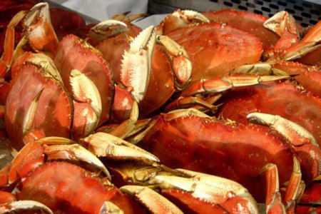 Crab Feast & Flightseeing Tours