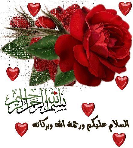 التكبر على المتكبر صدقة - الملتقى المفتوح - أخوات طريق الإسلام