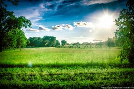 AKiA Landscape-35
