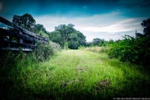AKiA Landscape-39