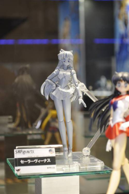 wonder-festival-2013-summer-part-1-shfiguarts-03