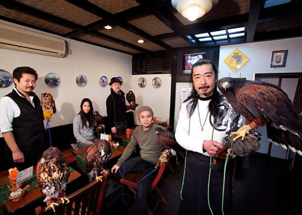 weirdest-japan-cafes-21
