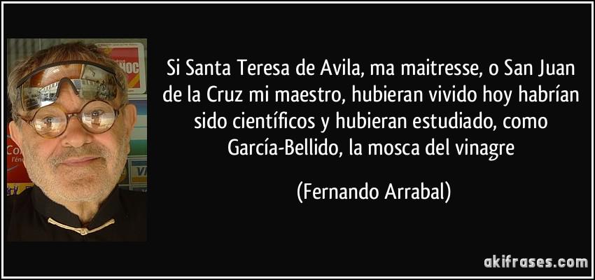 Teresa Biografia Santa Avila